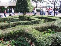 Disney Maze